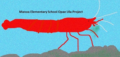 Manoa Elementary School project